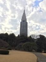 新宿御苑 15.jpg