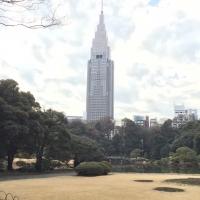 新宿御苑 16.jpg